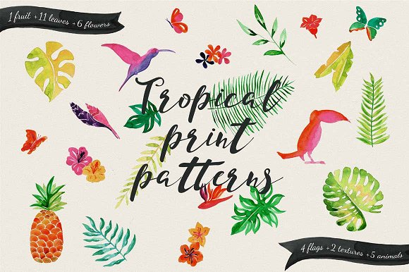 Jungle Tropical in Illustrations - product preview 2