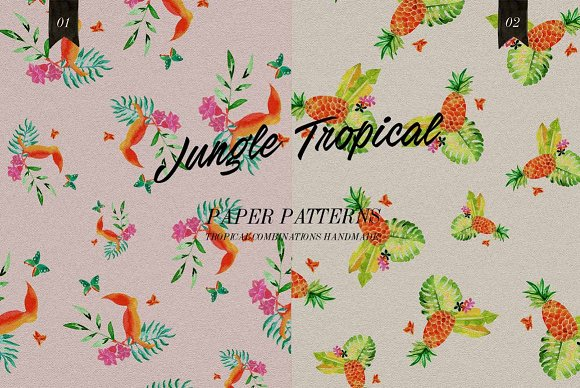 Jungle Tropical in Illustrations - product preview 3