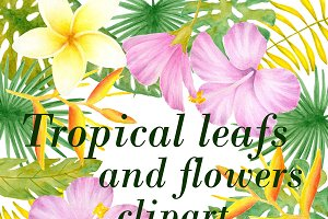 Tropical flower clipart and patterns