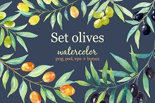 Olive set. Watercolor сollection.