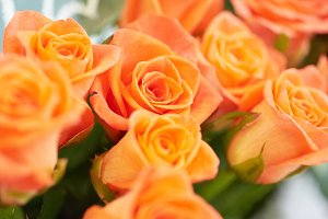 Bunch of red and orange roses