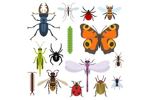 Insects set of icons from