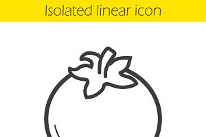 Tomato linear icon. Vector