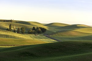 Rolling Hills at Sunset