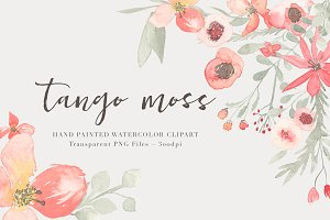 Watercolor  Floral Clipart - Tango