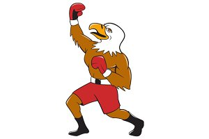 Bald Eagle Boxer Pumping Fist