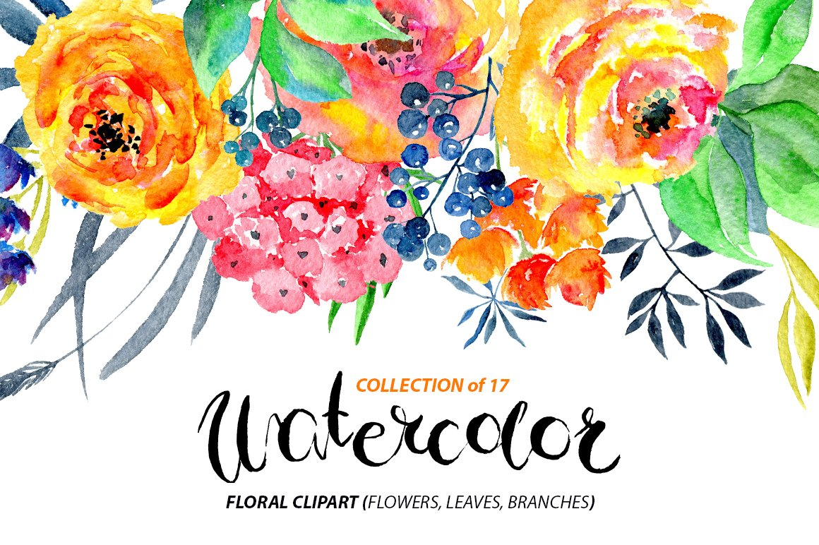 Watercolor Flowers Png Clipart Graphics Creative Market