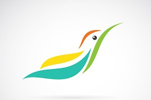 Vector image of an humming bird