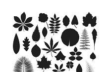Leave icon vector illustration