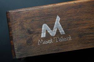 Meet Talent MT Logo