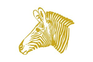 Vector Zebra Head Illustration