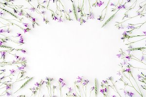 Floral frame with bluebells