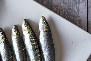 raw sardines with parsley and mint