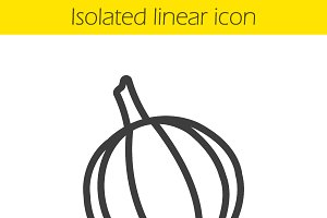 Garlic linear icon. Vector