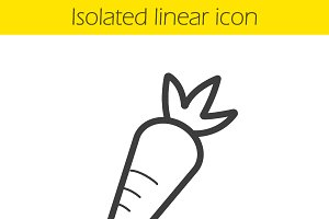 Carrot linear icon. Vector