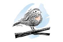 Robin Bird sitting branch. Vector