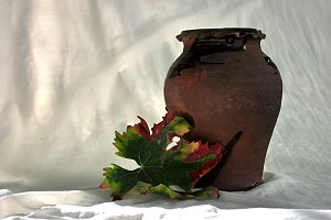 wine leaf and jar