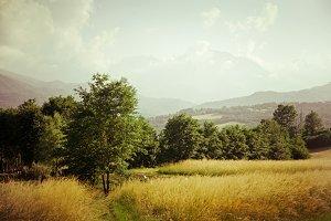 iseeyouphoto wheatfields