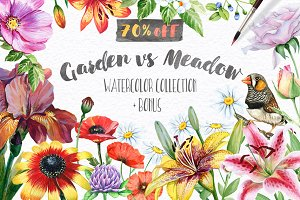 70% OFF! Floral set. Over 115 PNG