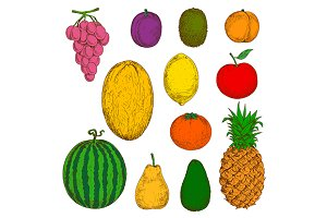 Fruits sketches set