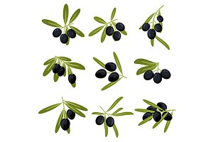 Black olive fruits icons