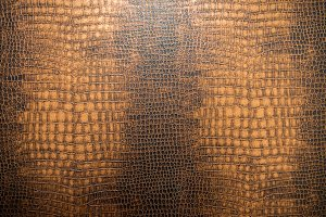 snake skin texture for background.