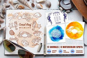 Coral Reef Wildlife Set