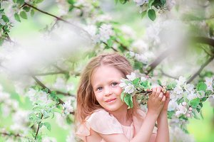 Adorable little girl in blooming cherry tree garden outdoors