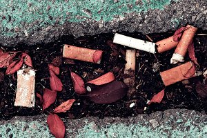 Cigarette butts on the streets