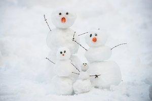 funny snowman family