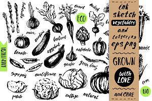 Ink sketch vegetables