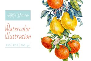 Watercolor citrus