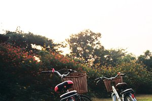 Two bicycles in park