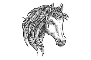 Strong stallion