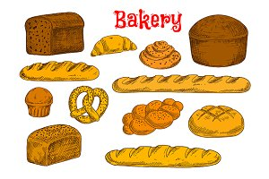 Fresh bakery and bread sketches