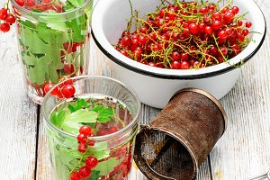 Tea with berries and leaves of currant