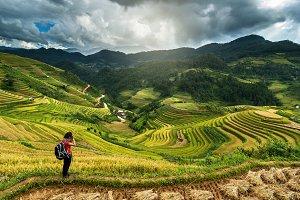 YenBai province, Northwest Vietnam