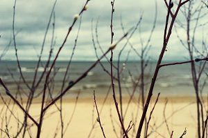 Baltic sea in spring