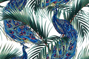 Peacock,palm leaves pattern