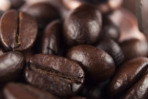 fresh coffee bean