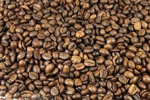 fresh coffee beans shining