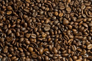 coffee beans view