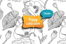Linear poppy vector collection