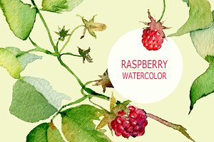 Raspberries isolated & 2 patterns