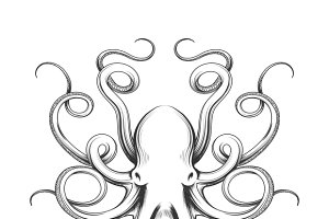 Engraved octopus vector icon