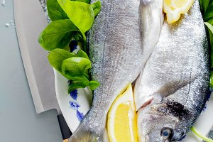 Fresh uncooked dorado or sea bream