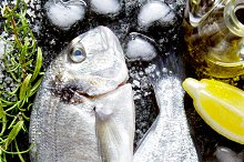 two Fresh Fish