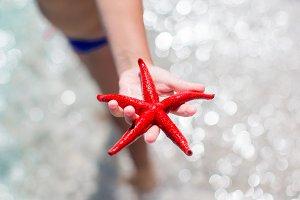 Closeup starfish at beach background water