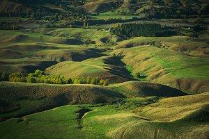 Farmland in Hawke's Bay, NZ