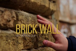 Brick Wall - Video Footage Clip
